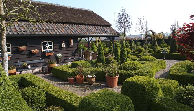 Romantická zahrada plná buxusů