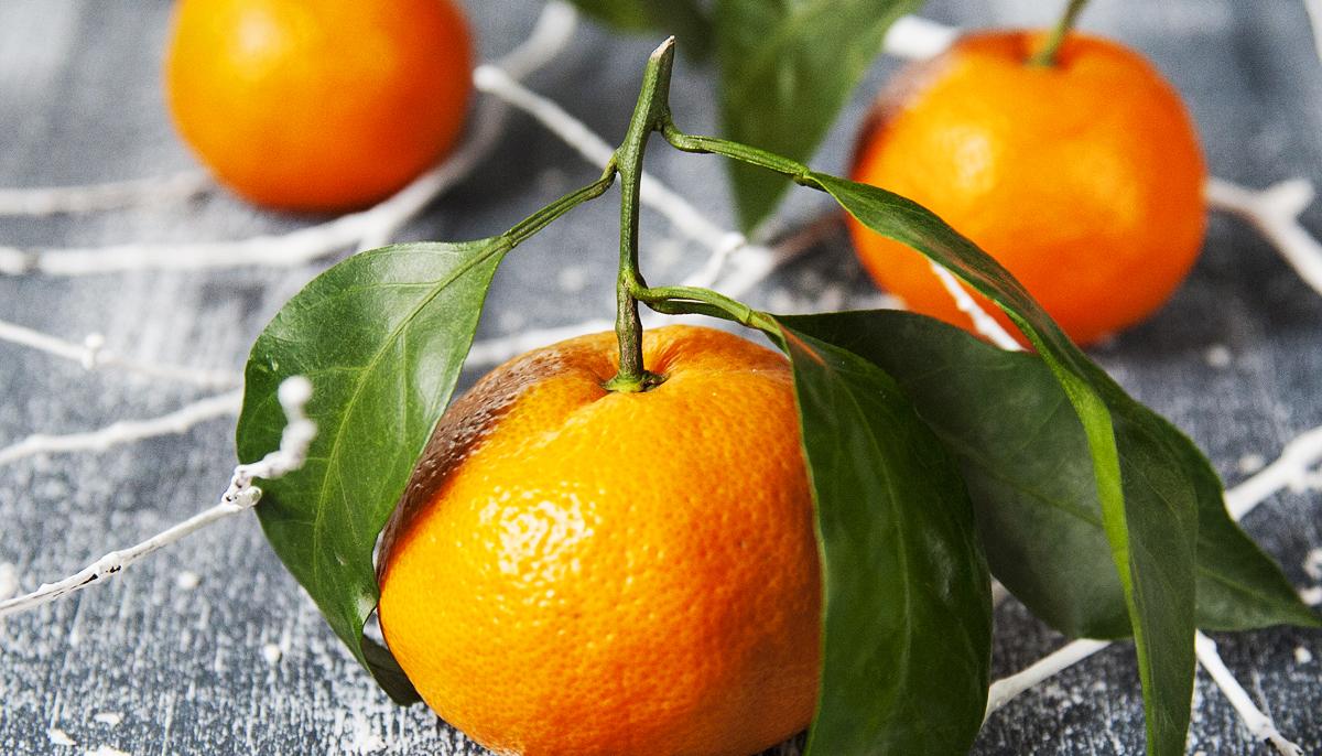 Citrusy - poslové subtropického ráje