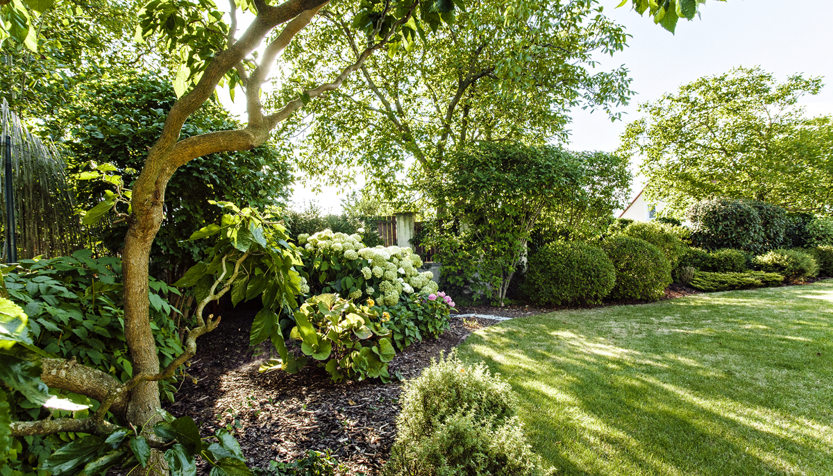 Návštěva: Zahrada pro radost