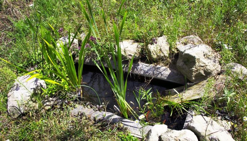 Zahradní jezírko: Druhý život staré vany