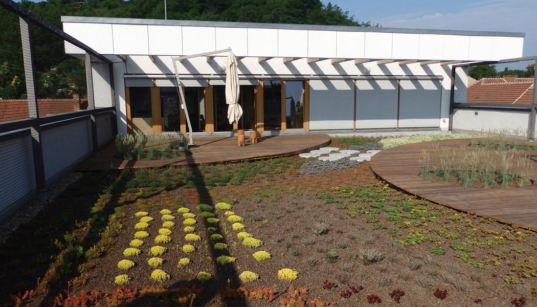 Zelená střecha je krásná i užitečná