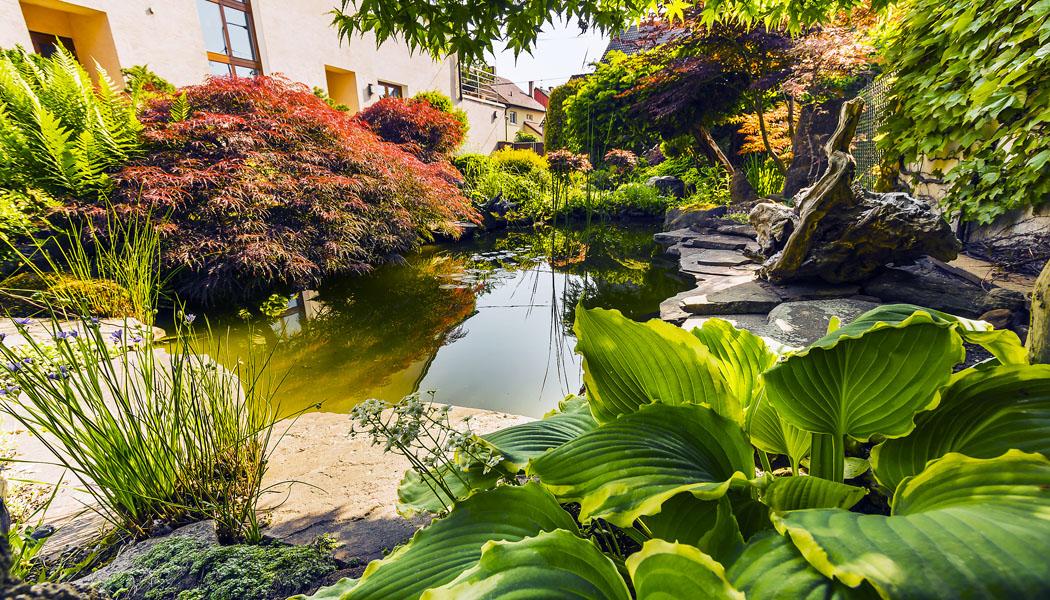 Zahradní inspirace na japonské téma