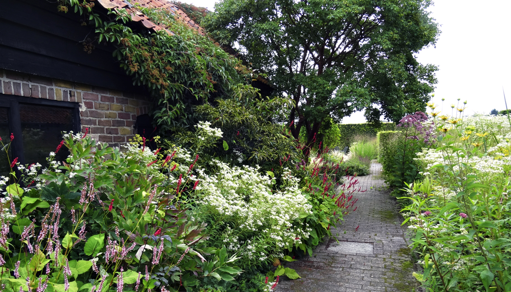 Zahrada, která si umí pomoci sama