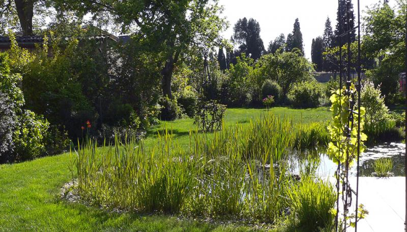 Rekonstrukce zahrady je kompromis