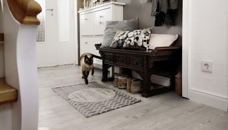 Podlahy a mazlíčci: Pozor na psí loužičky a protahování koček
